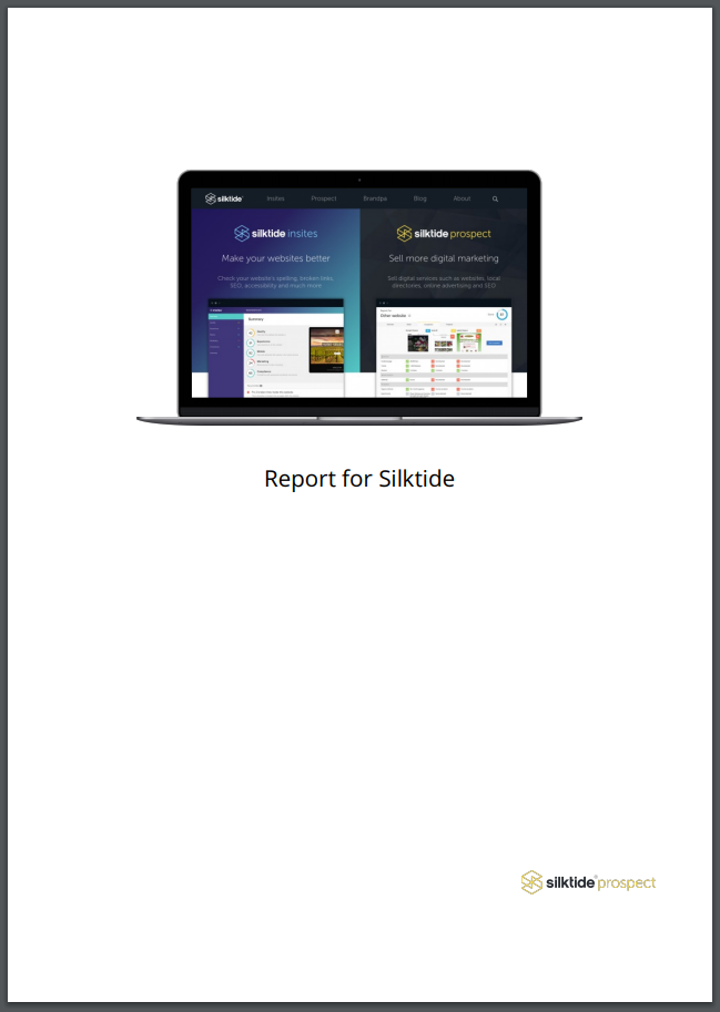 Silktide Prospect PDF report with logo